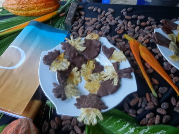 Dried fruit dipped in dark chocolate at the Chocolate Festival
